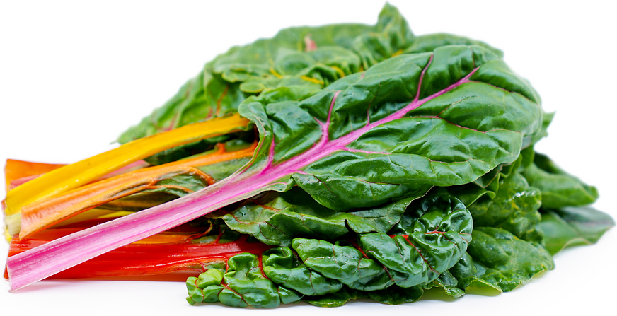 Rainbow Swiss Chard Information And Facts