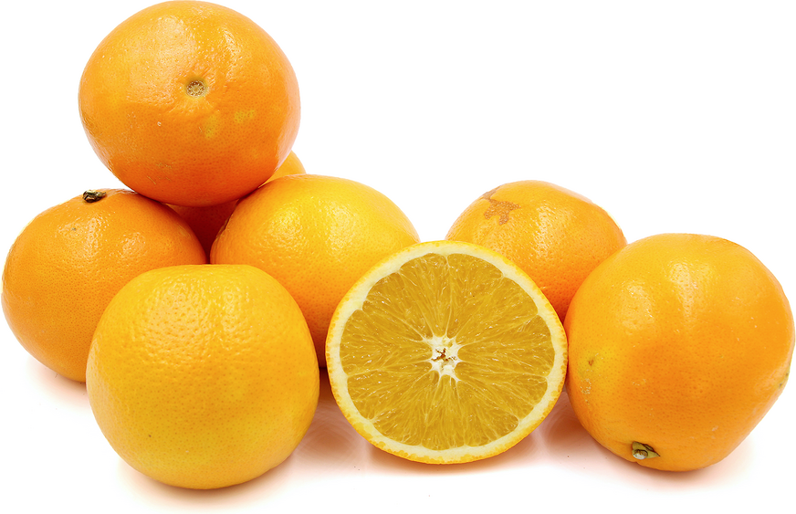 Jumbo Navel Oranges picture