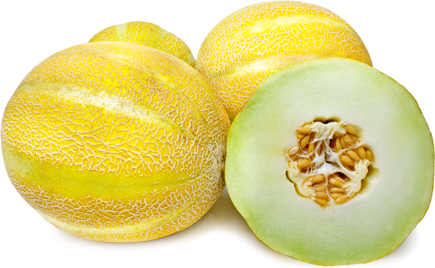 Lemon Drop Melon picture