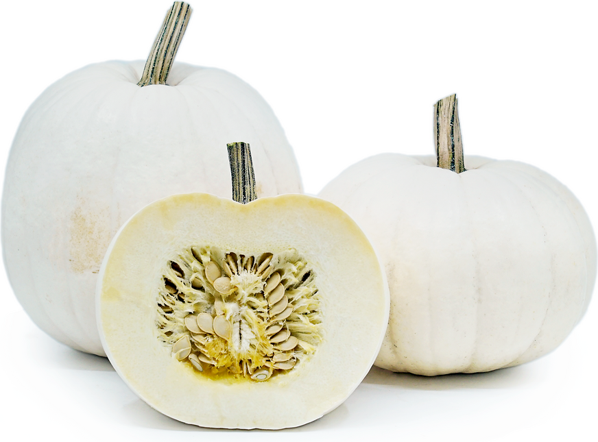 Pumpkins Lumina (White) picture