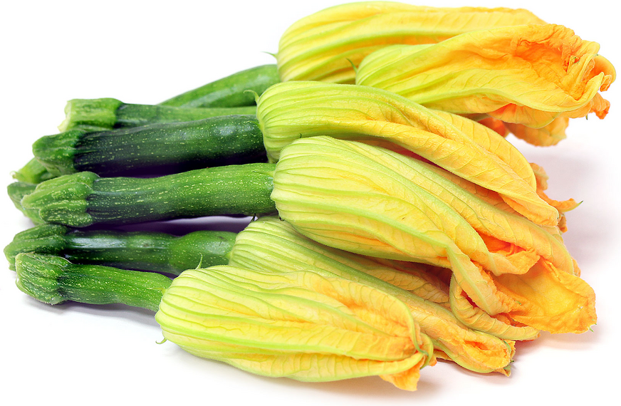Zuchini with Flower picture