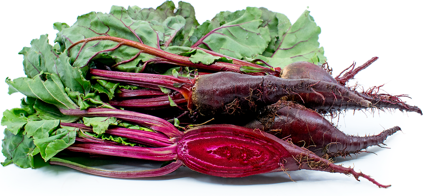 Cylindra Beets picture