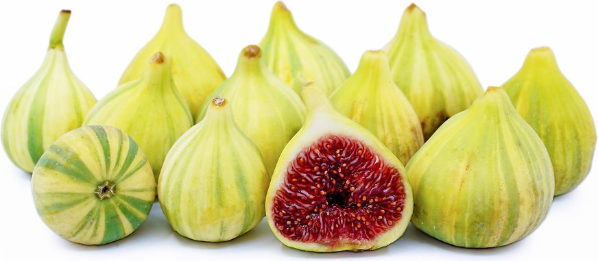 Tiger Stripe Figs picture