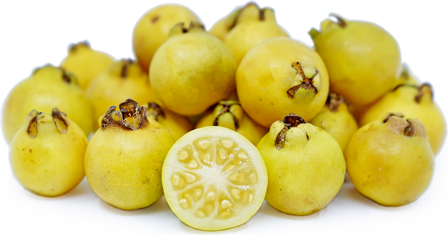 Lemon Guavas picture