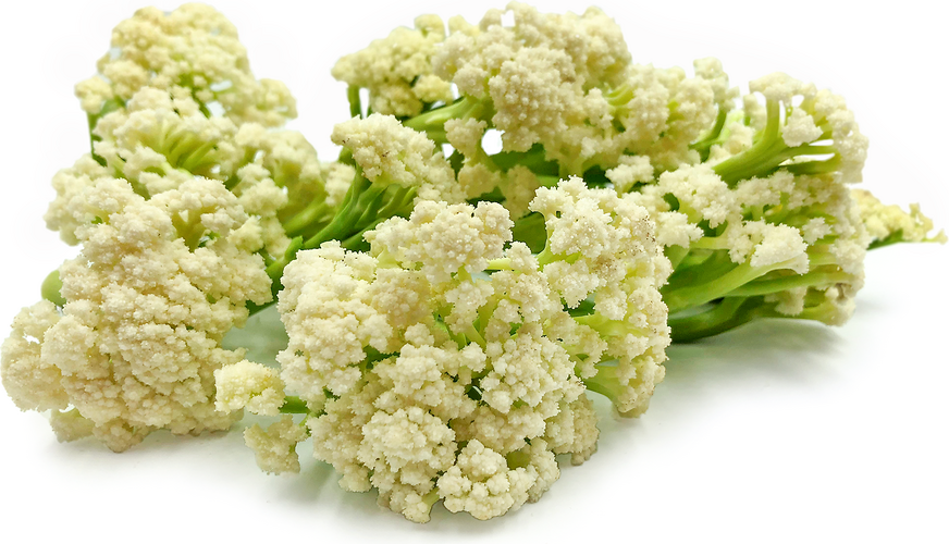 Karifurore Cauliflower picture
