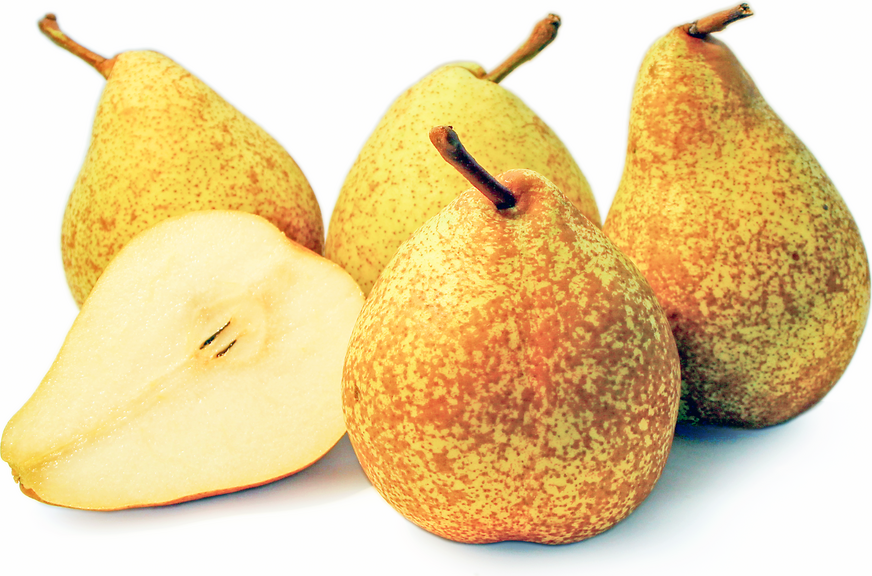 General Leclerc Pears picture