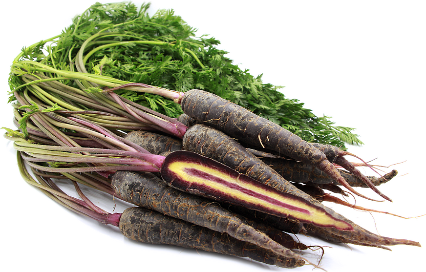 Baby Purple Bunch Carrots picture