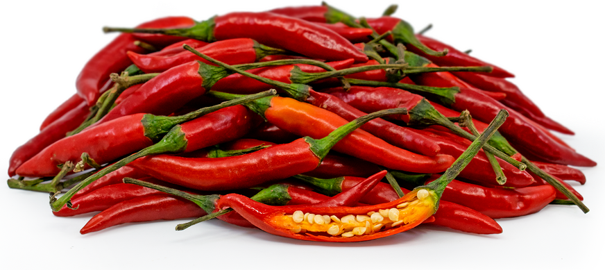 Red Thai Chile Peppers picture